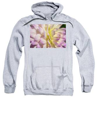 Dahlia Study 5 Painterly  Sweatshirt