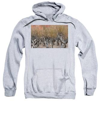 Dancing Trees Sweatshirt