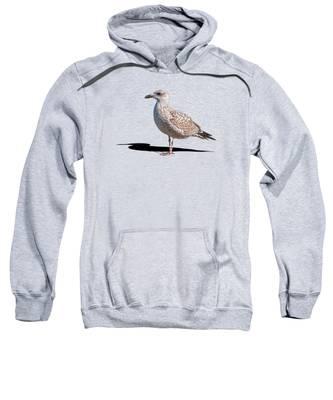 Daytime Hooded Sweatshirts T-Shirts