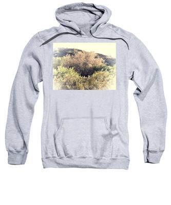 Sweatshirt featuring the photograph Desert Ironwood Afternoon by Judy Kennedy
