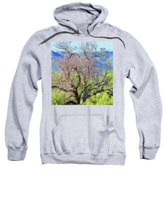 Sweatshirt featuring the photograph Desert Ironwood Beauty by Judy Kennedy
