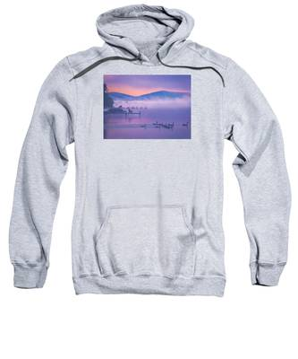 Ducks Under Fog Sweatshirt