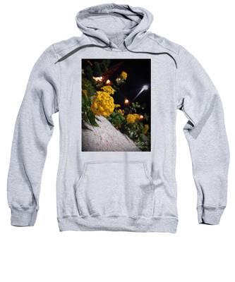 Evening Spring Sweatshirt