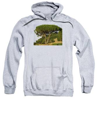 Fairfax Beauty Sweatshirt