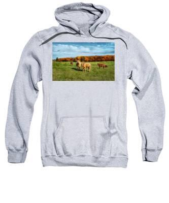 Farm Field And Brown Cows Sweatshirt