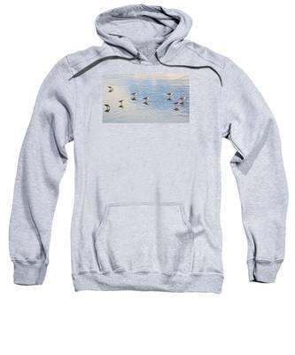 Flock Of Sanderlings Sweatshirt
