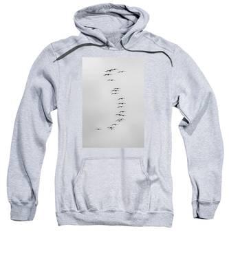Flow Of The Pelican Sweatshirt