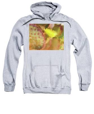 Flowering Pear Sweatshirt