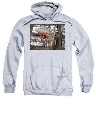 Flying Pheasant Sweatshirt