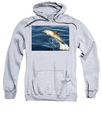 Free Jumper Sweatshirt