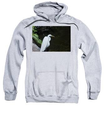 Great White Egret Sweatshirt