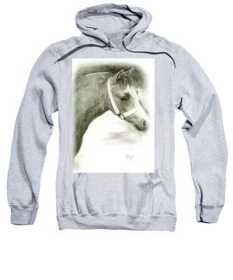 Grey Welsh Pony  Sweatshirt