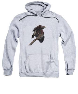 Sonoran Desert Hooded Sweatshirts T-Shirts