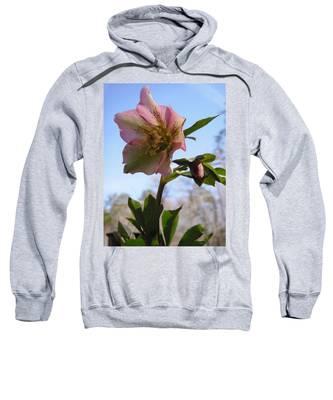 Hellebore Morning Sweatshirt