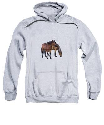 Horses In A Misty Dawn Sweatshirt