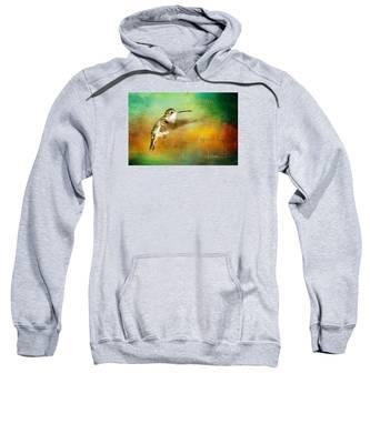 Hummingbird Hover Sweatshirt