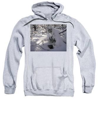 Icy Fern Sweatshirt