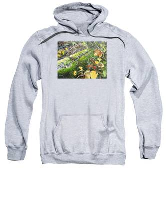 If There Were Fairies Sweatshirt