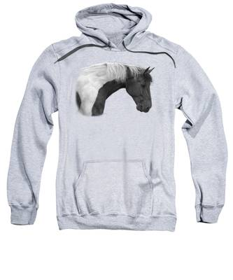 Intrigued - Black And White Sweatshirt