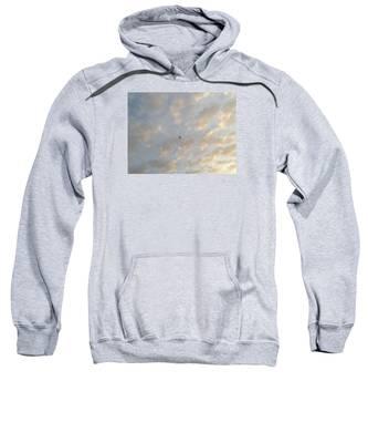 Jonathan Livingston Seagull Sweatshirt
