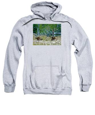 Lazy Days Sweatshirt