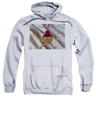 Sweatshirt featuring the photograph Little Jewel All Aglow by Judy Kennedy