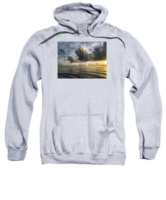 Loan Pelican Sweatshirt