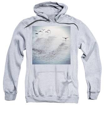 Looner Liftoff Sweatshirt