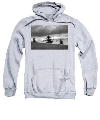 Moody Meadow, Tsenkher, 2016 Sweatshirt