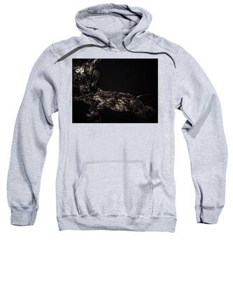Moonlight Sweatshirt