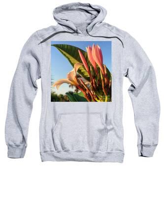 Morning Heaven Sweatshirt