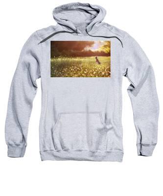 Morning Rabbit Sweatshirt