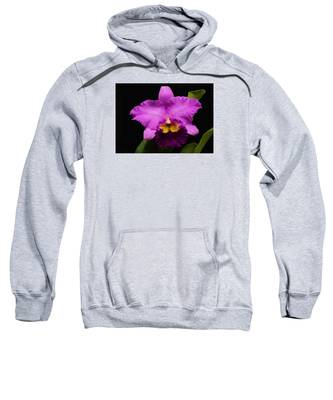 Pink Orchid Sweatshirt
