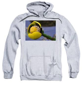 Pond Lily In Bloom Sweatshirt