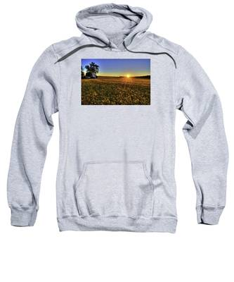Rays Over The Field Sweatshirt