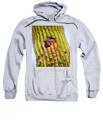 Sweatshirt featuring the photograph Screech Owl In Saguaro by Judy Kennedy