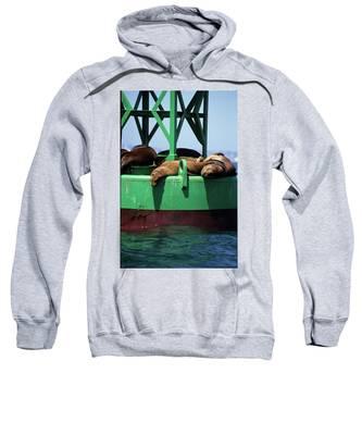 Seals On Channel Marker Sweatshirt