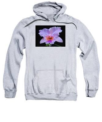Serendipity Orchid Sweatshirt