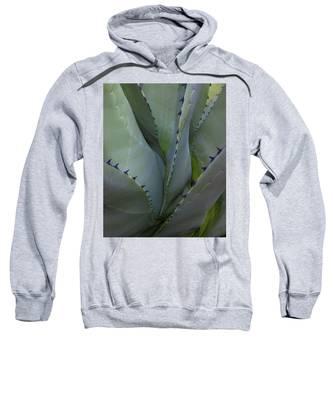 Spiny Cosmos Sweatshirt by Lon Dittrick