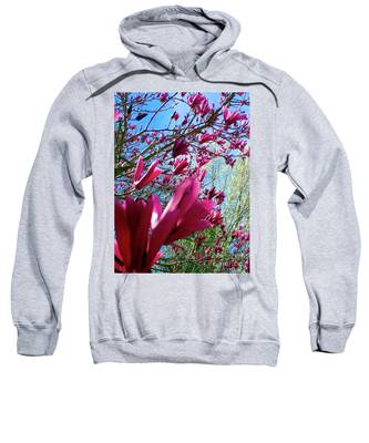 Spring Sky Sweatshirt