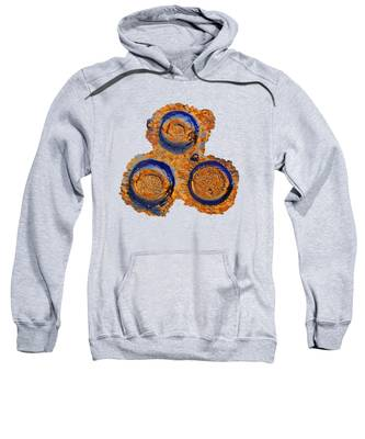 Sun Catchers Sweatshirt