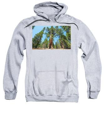 The Grizzly Giant- Sweatshirt