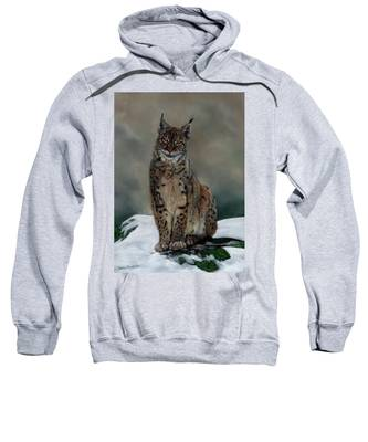 The Missing Lynx Sweatshirt