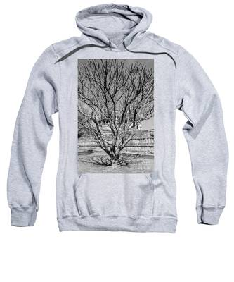 Tree And Temple Sweatshirt
