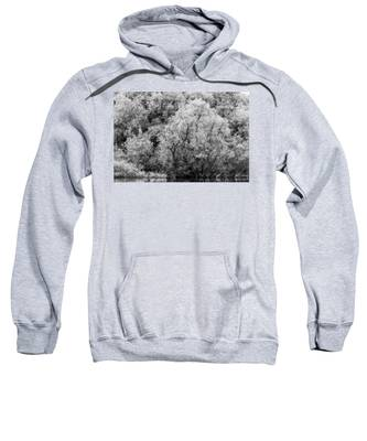Trees On The River Sweatshirt