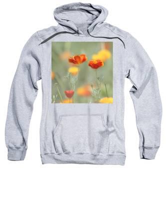 Whimsical Summer Sweatshirt