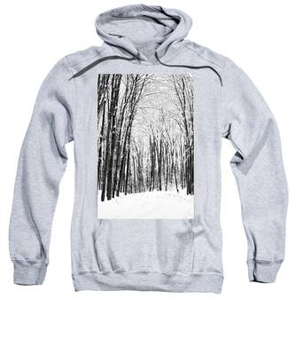 Winter Startk Sweatshirt