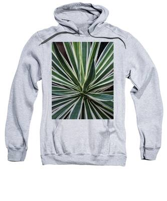 Yucca Whirl Sweatshirt by Lon Dittrick