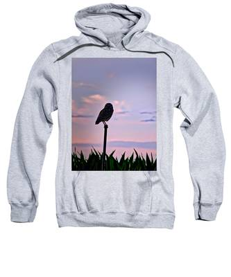 Sweatshirt featuring the photograph Burrowing Owl On A Stick by Judy Kennedy