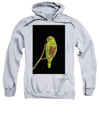Colorful Parrot Sweatshirt